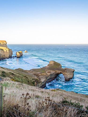 Image of a walking track leading down to Tunnel Beach on a clear blue sky day, with waves rolling into the coast
