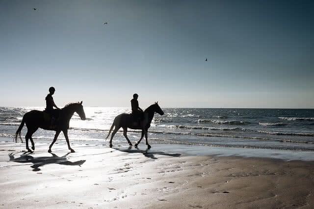 Horse riding on Pakiri Beach, just over an hour north of Auckland