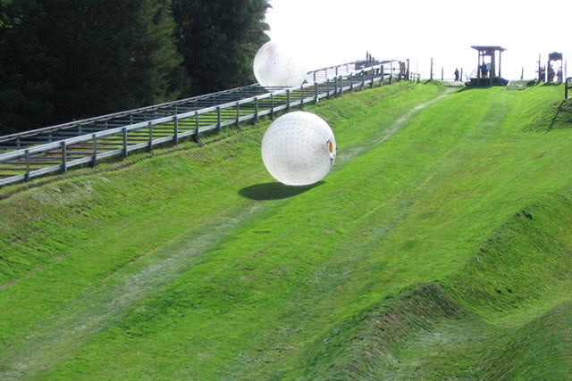 Image of people 'zorbing' down a hill in Rotorua, New Zealand