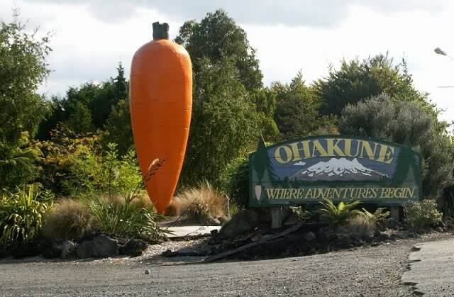 Weird Attractions Okahune Giant Carrot