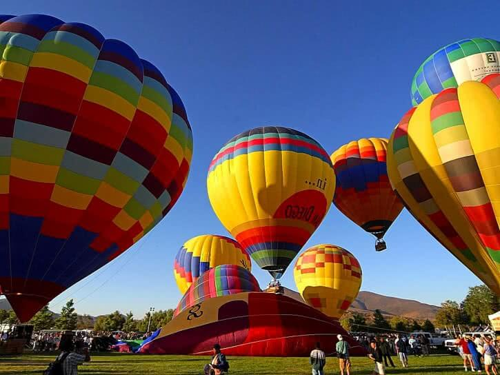 Image of a field full of hot air balloons