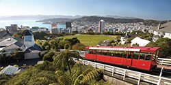 Image of Oriental Bay in Wellington taken from Mt Victoria on a sunny summer's day - mobile